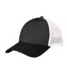 NE1080 - Vintage Mesh Cap